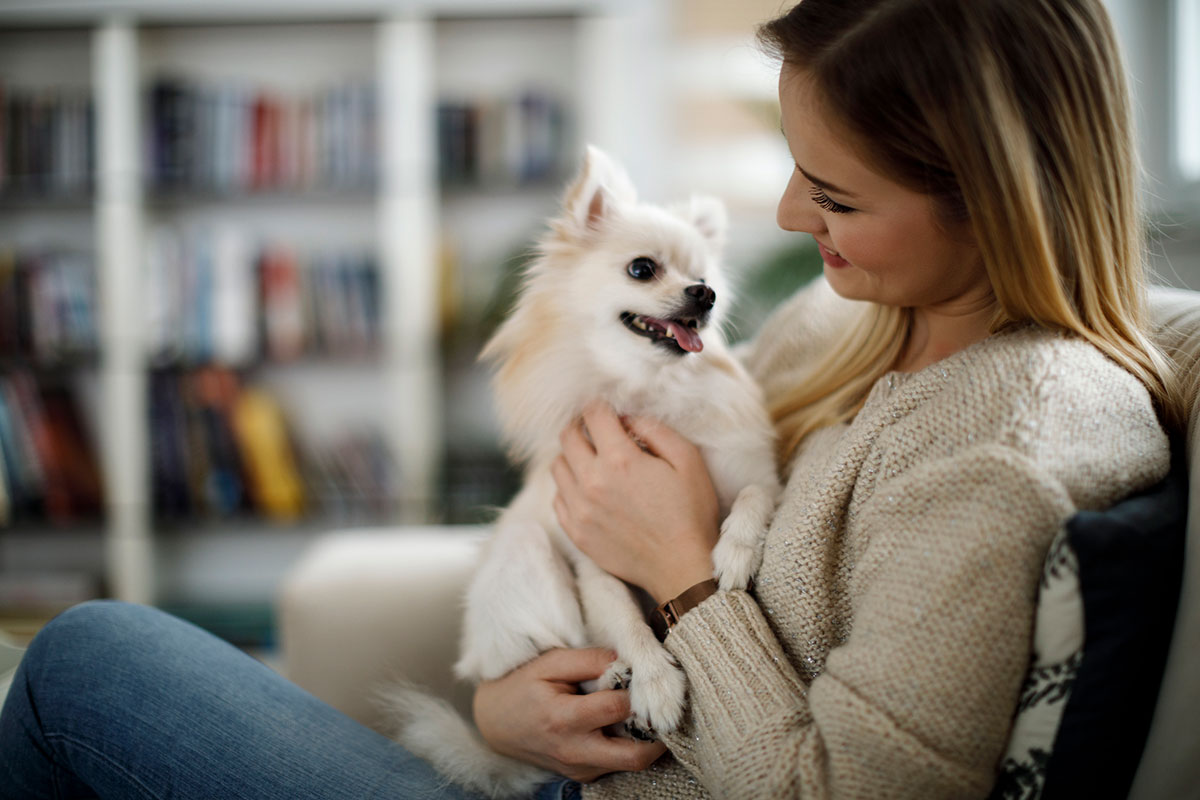 Women & dog in pet-friendly bachelor apartment - Humber River Apartments